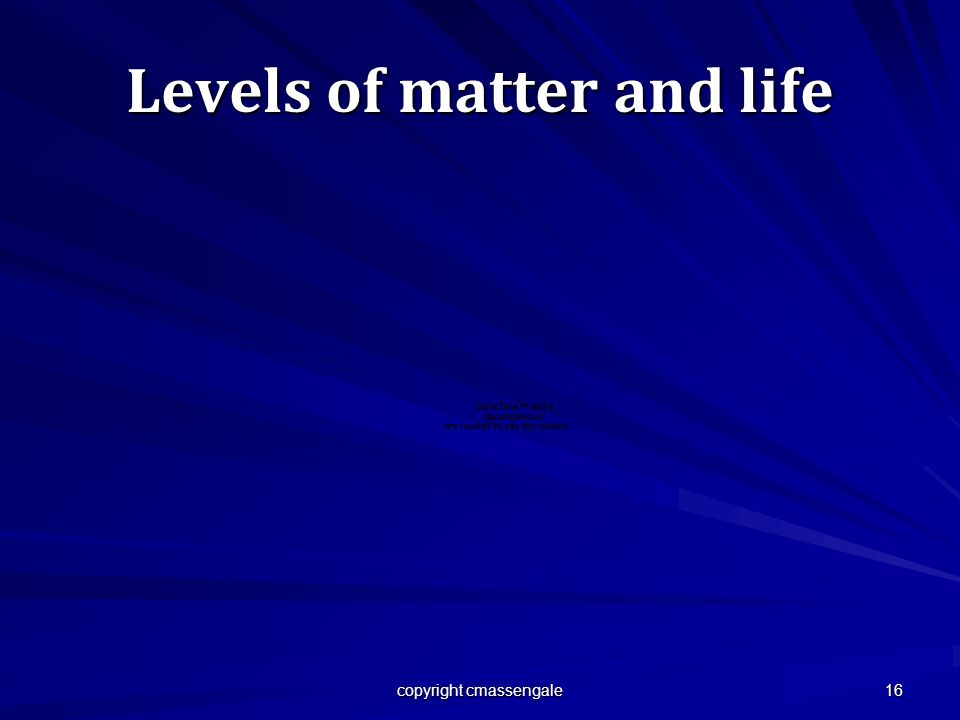 16 Levels of matter and life copyright cmassengale