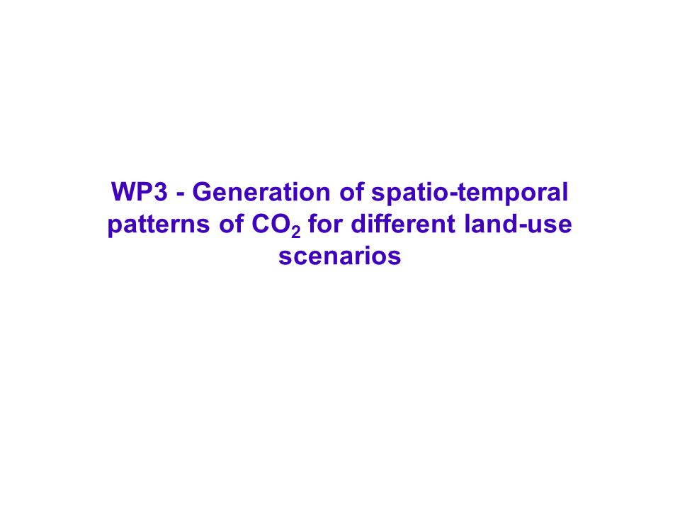 WP3 - Generation of spatio-temporal patterns of CO 2 for different land-use scenarios