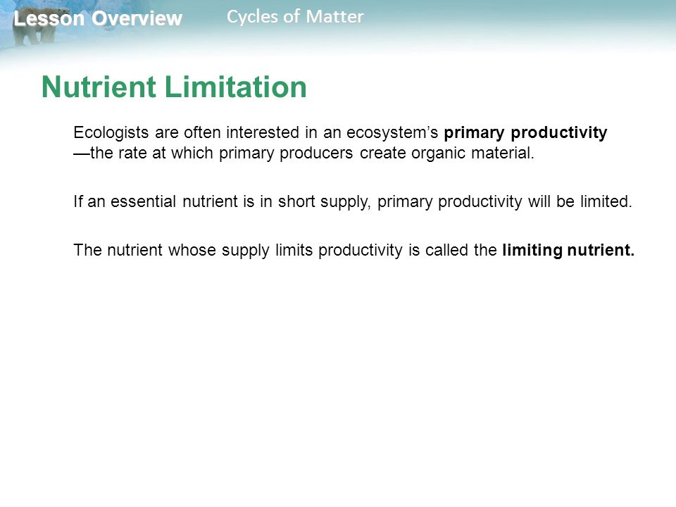 Lesson Overview Lesson Overview Cycles of Matter Nutrient Limitation Ecologists are often interested in an ecosystem's primary productivity —the rate at which primary producers create organic material.