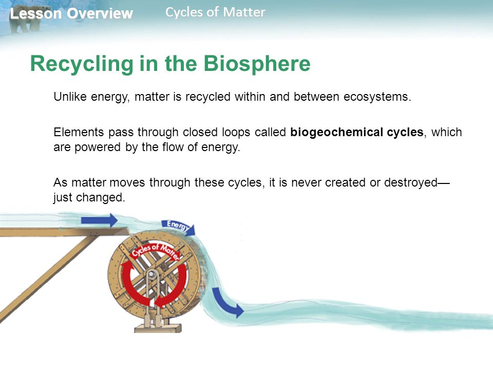 Lesson Overview Lesson Overview Cycles of Matter Recycling in the Biosphere Unlike energy, matter is recycled within and between ecosystems.