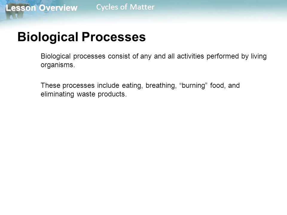 Lesson Overview Lesson Overview Cycles of Matter Biological Processes Biological processes consist of any and all activities performed by living organisms.