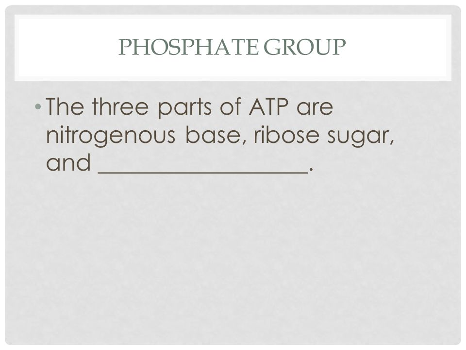 PHOSPHATE GROUP The three parts of ATP are nitrogenous base, ribose sugar, and __________________.
