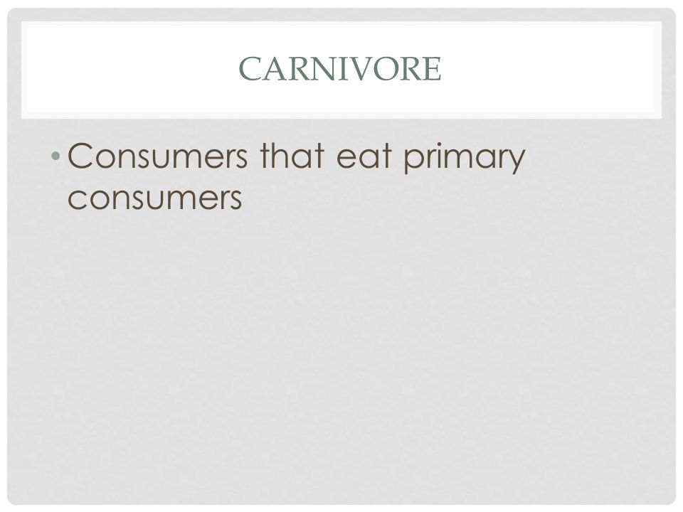 CARNIVORE Consumers that eat primary consumers