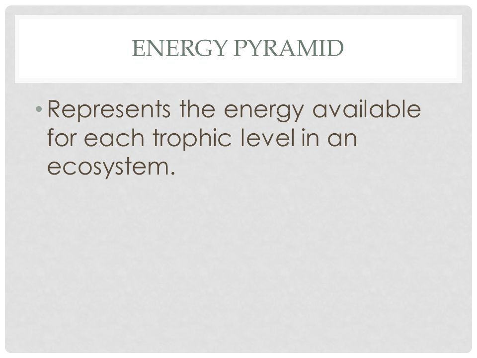 ENERGY PYRAMID Represents the energy available for each trophic level in an ecosystem.