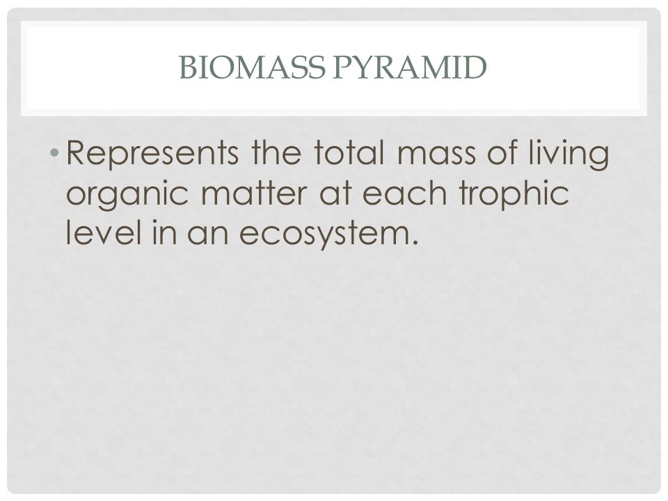 BIOMASS PYRAMID Represents the total mass of living organic matter at each trophic level in an ecosystem.