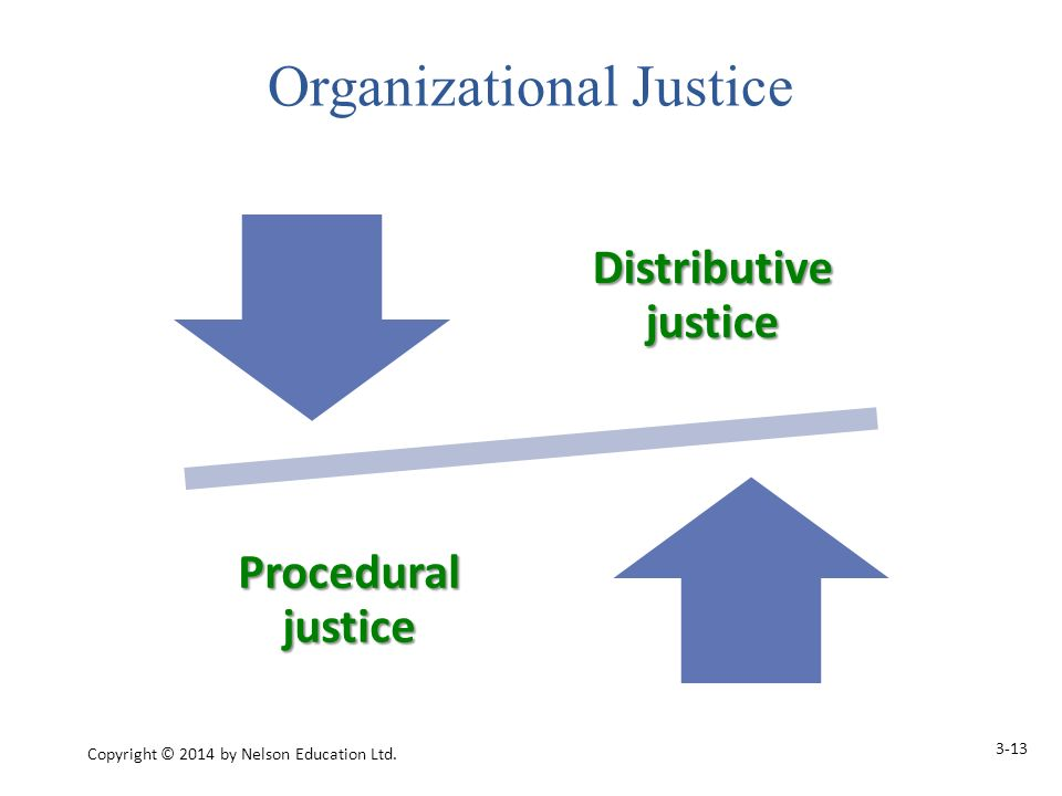 Distributive justice Procedural justice 3-13 Copyright © 2014 by Nelson Education Ltd.