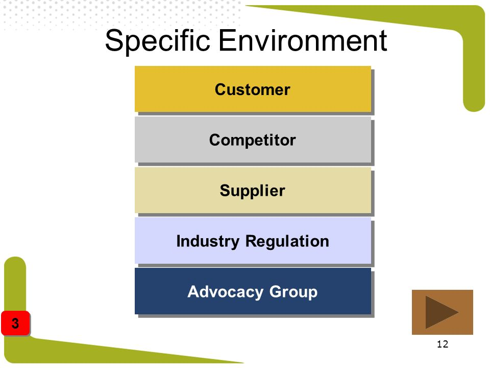 12 Specific Environment Customer Competitor Supplier Industry Regulation Advocacy Group 3 3