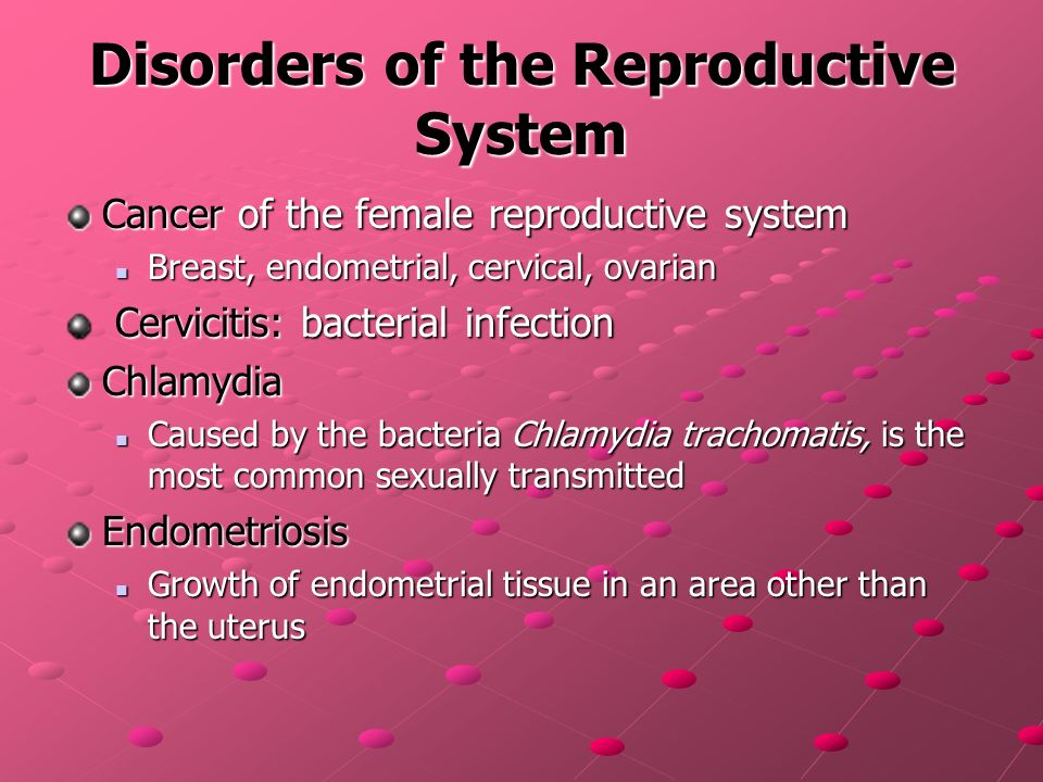 the female reproductive system health science ppt download, Muscles