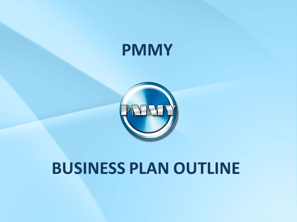 Cost of a professional business plan