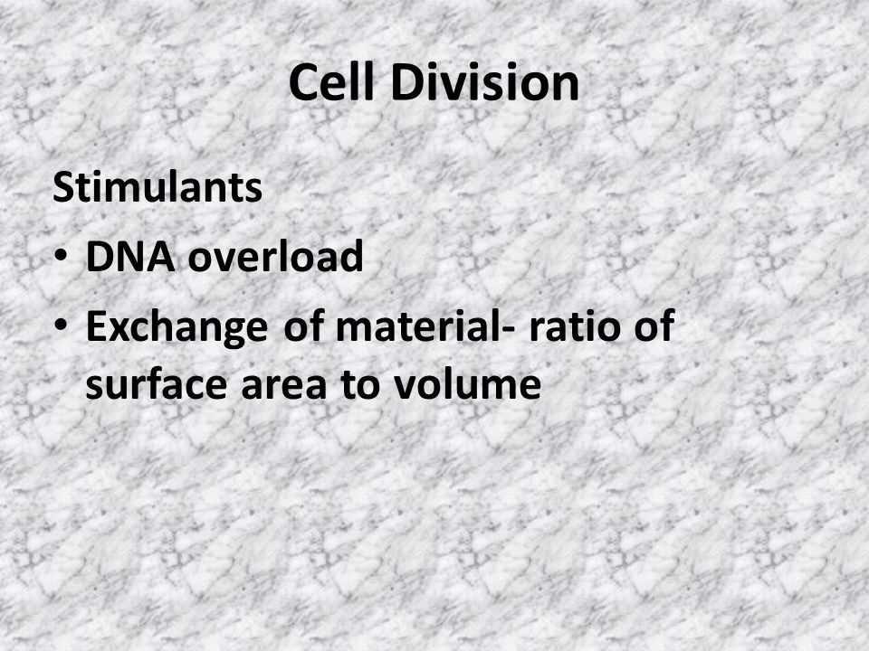 Cell Division Stimulants DNA overload Exchange of material- ratio of surface area to volume