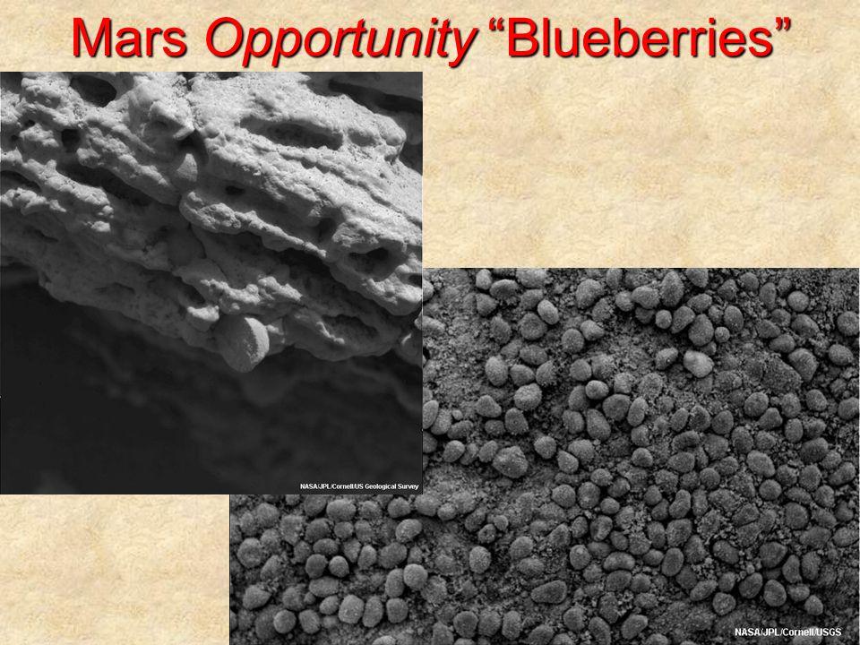 Mars Opportunity Blueberries