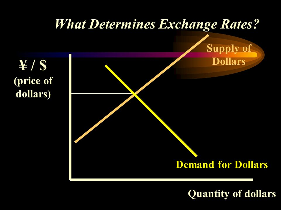 What Determines Exchange Rates.