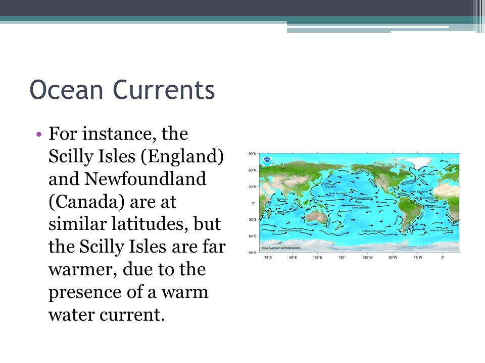 Ocean Currents For instance, the Scilly Isles (England) and Newfoundland (Canada) are at similar latitudes, but the Scilly Isles are far warmer, due to the presence of a warm water current.