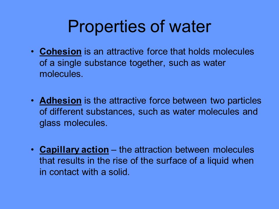 Properties of water Cohesion is an attractive force that holds molecules of a single substance together, such as water molecules.