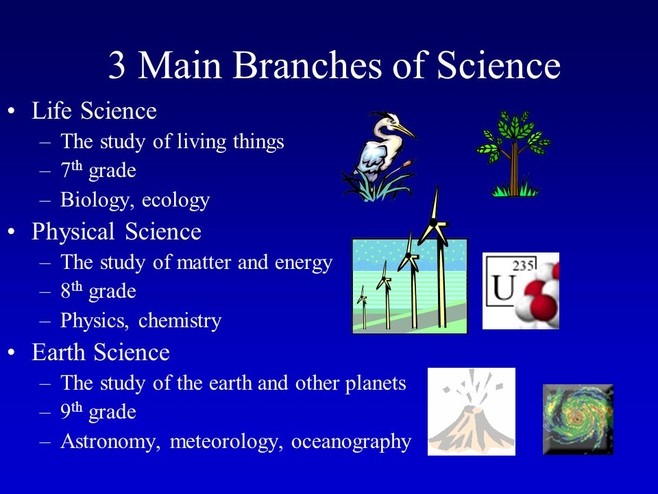 Worksheet Branches Of Science branches and jobs in science good discussion ppt 3 main of