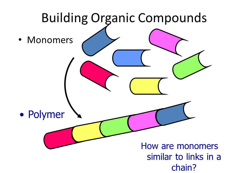 Building Organic Compounds Monomers Polymer How are monomers similar to links in a chain