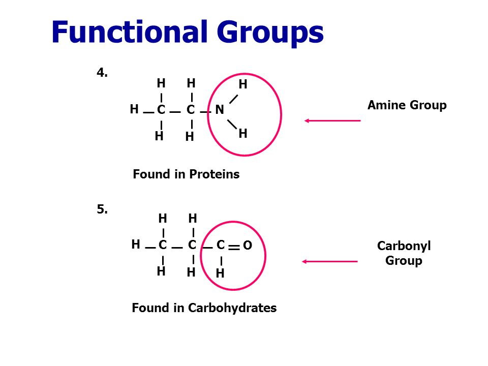 4. Functional Groups 5.