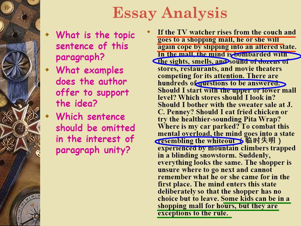 essay on misuse of internet