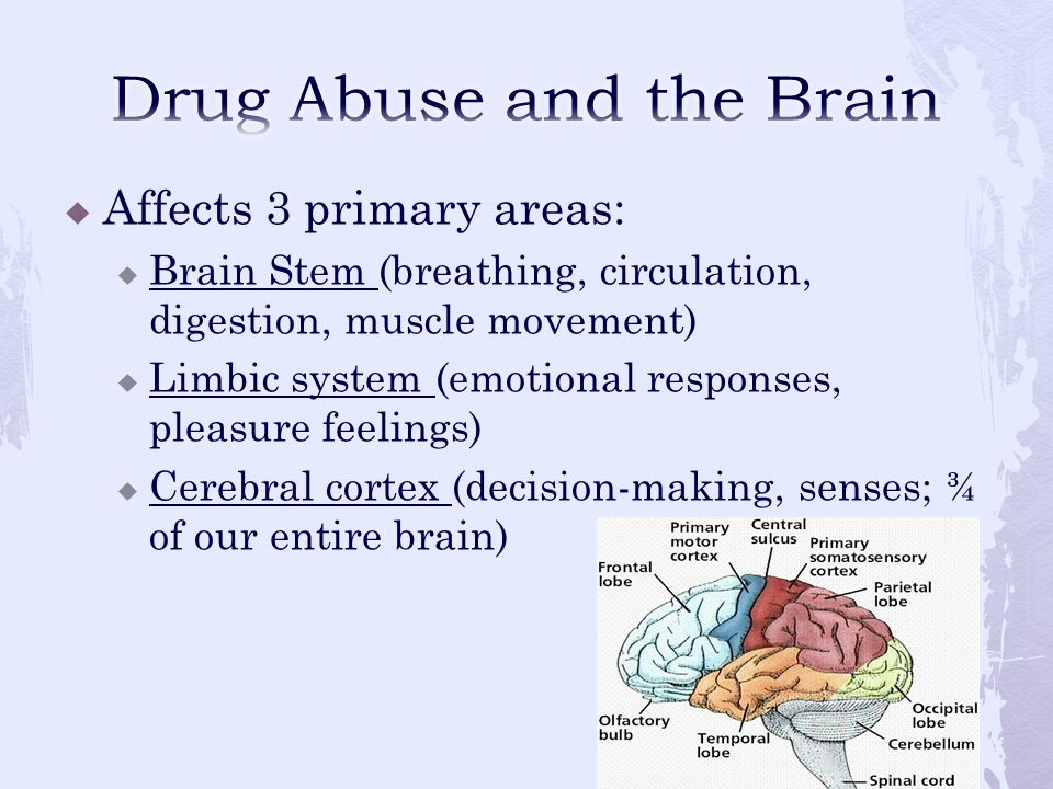  Interrupt how it works  Change how the brain performs  Changes can lead to compulsive drug use (aka = addiction)