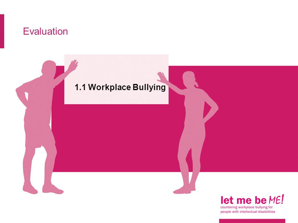 Evaluation 1.1 Workplace Bullying