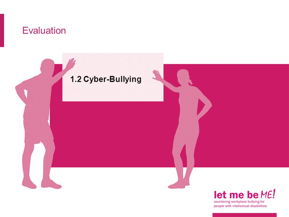 Evaluation 1.2 Cyber-Bullying