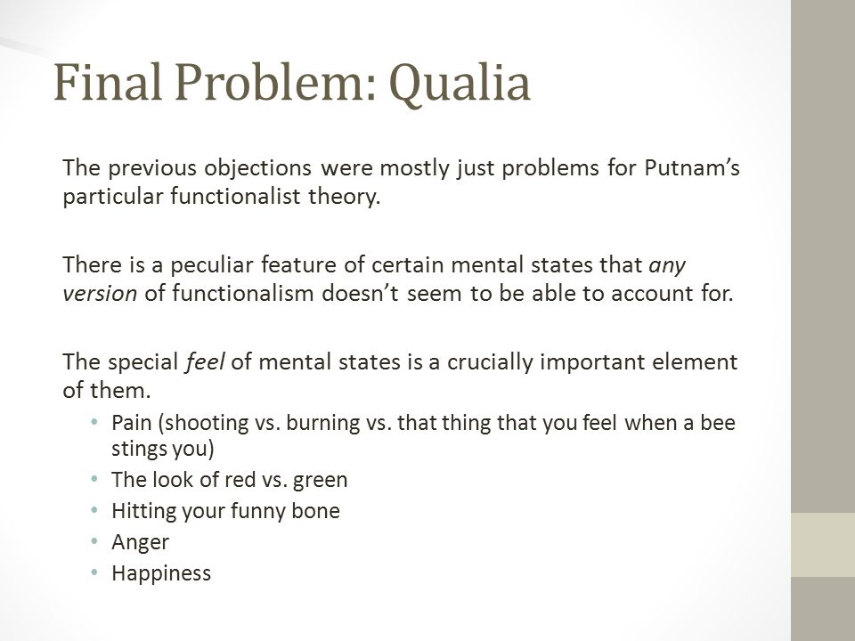Final Problem: Qualia The previous objections were mostly just problems for Putnam's particular functionalist theory.