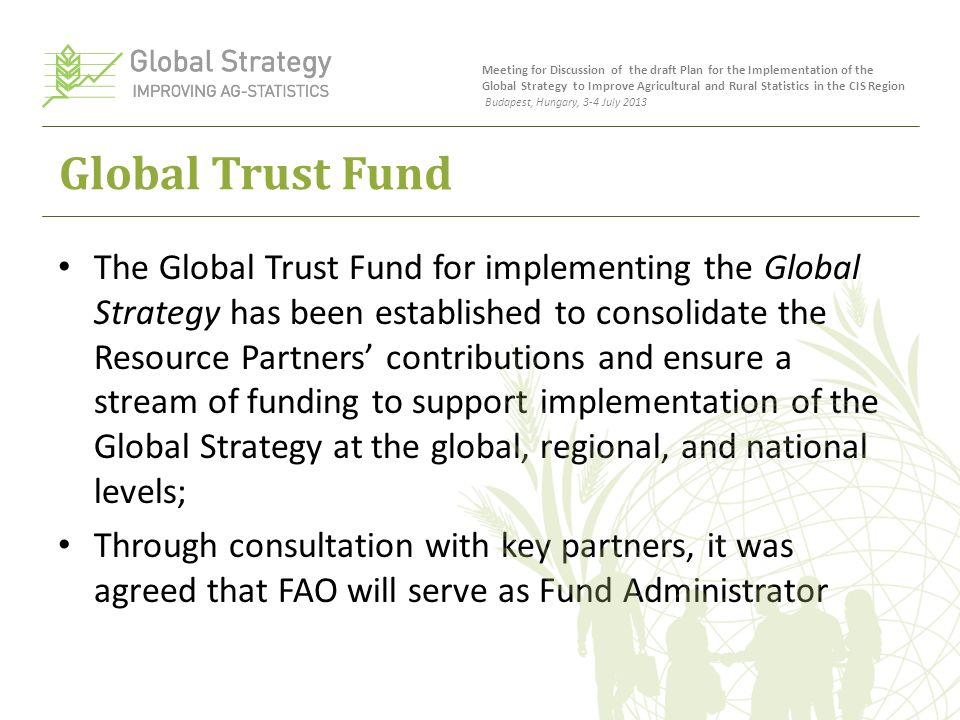 Global Trust Fund The Global Trust Fund for implementing the Global Strategy has been established to consolidate the Resource Partners' contributions and ensure a stream of funding to support implementation of the Global Strategy at the global, regional, and national levels; Through consultation with key partners, it was agreed that FAO will serve as Fund Administrator Meeting for Discussion of the draft Plan for the Implementation of the Global Strategy to Improve Agricultural and Rural Statistics in the CIS Region Budapest, Hungary, 3-4 July 2013