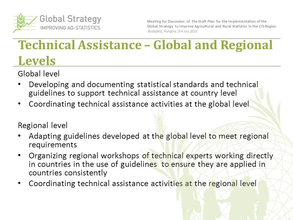 Technical Assistance – Global and Regional Levels Global level Developing and documenting statistical standards and technical guidelines to support technical assistance at country level Coordinating technical assistance activities at the global level Regional level Adapting guidelines developed at the global level to meet regional requirements Organizing regional workshops of technical experts working directly in countries in the use of guidelines to ensure they are applied in countries consistently Coordinating technical assistance activities at the regional level Meeting for Discussion of the draft Plan for the Implementation of the Global Strategy to Improve Agricultural and Rural Statistics in the CIS Region Budapest, Hungary, 3-4 July 2013
