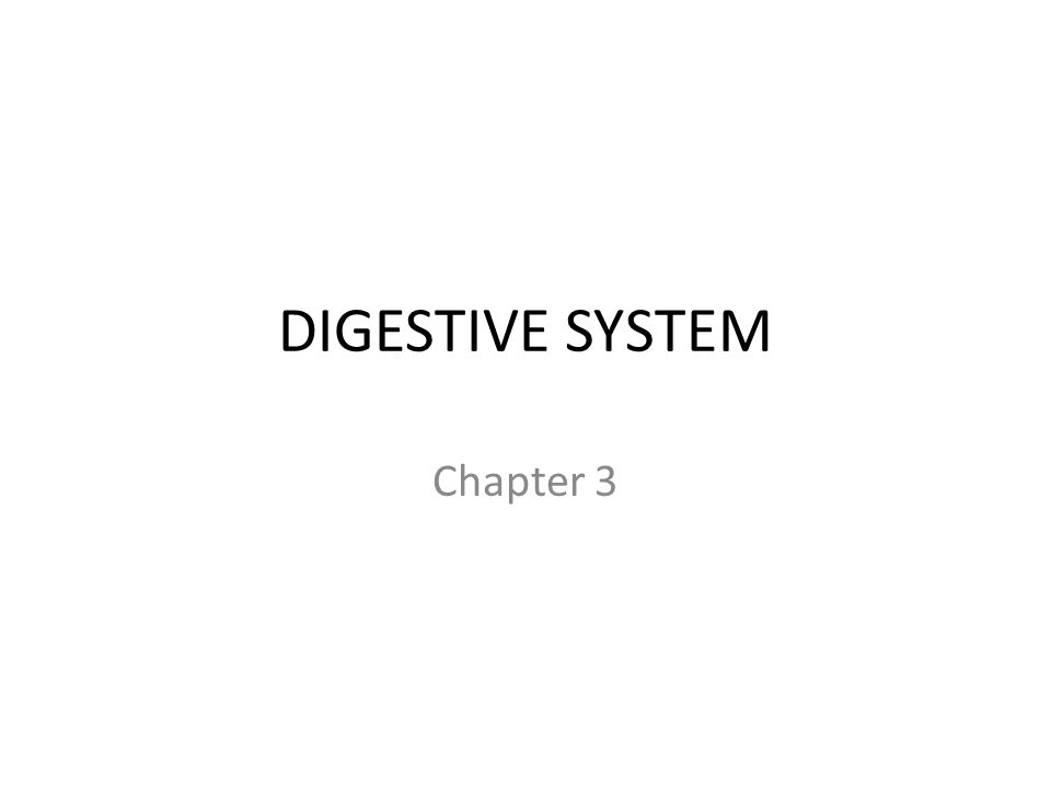DIGESTIVE SYSTEM Chapter 3