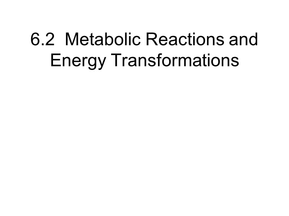 6.2 Metabolic Reactions and Energy Transformations