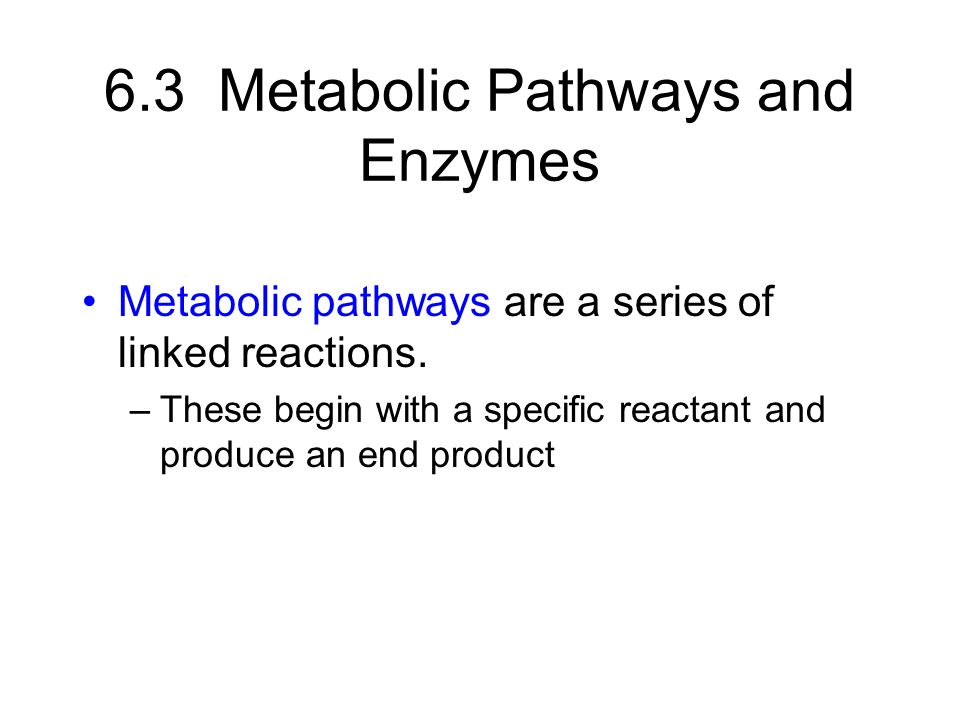 6.3 Metabolic Pathways and Enzymes Metabolic pathways are a series of linked reactions.