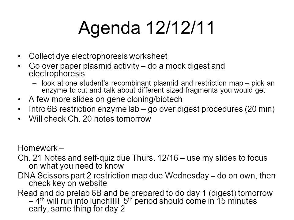 Agenda 121211 Collect dye electrophoresis worksheet Go over – Restriction Enzymes Worksheet