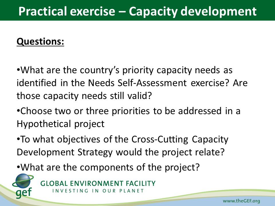 Questions: What are the country's priority capacity needs as identified in the Needs Self-Assessment exercise.