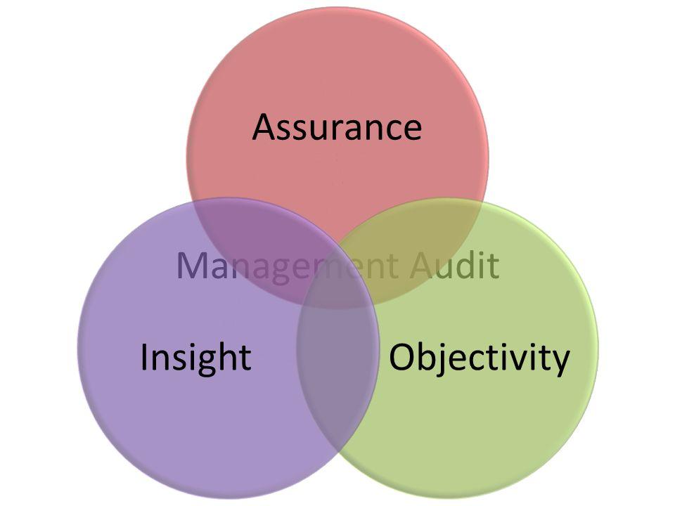 Management Audit Assurance ObjectivityInsight