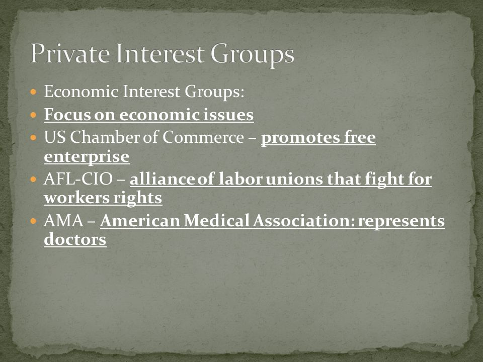 Economic Interest Groups: Focus on economic issues US Chamber of Commerce – promotes free enterprise AFL-CIO – alliance of labor unions that fight for workers rights AMA – American Medical Association: represents doctors