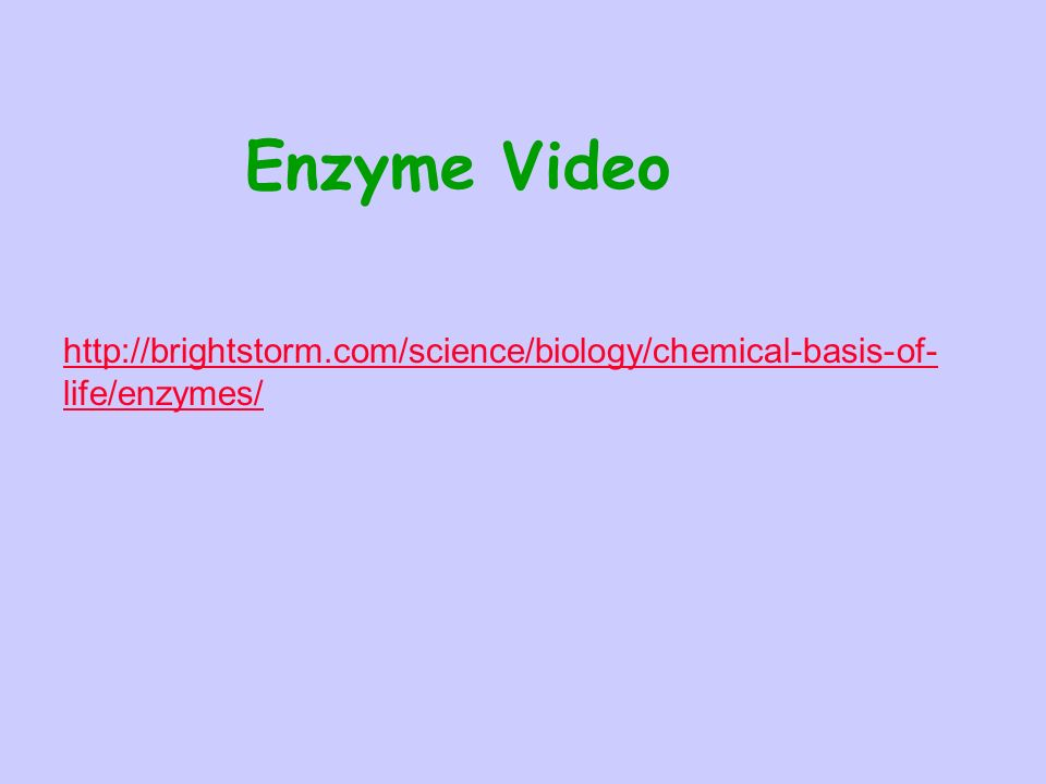 Enzyme Video   life/enzymes/