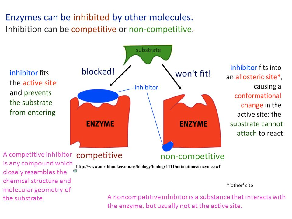 A competitive inhibitor is any compound which closely resembles the chemical structure and molecular geometry of the substrate.