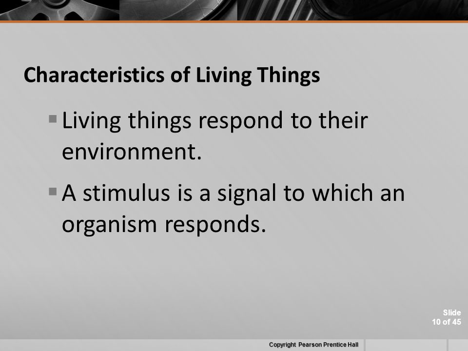 Slide 10 of 45 Characteristics of Living Things  Living things respond to their environment.