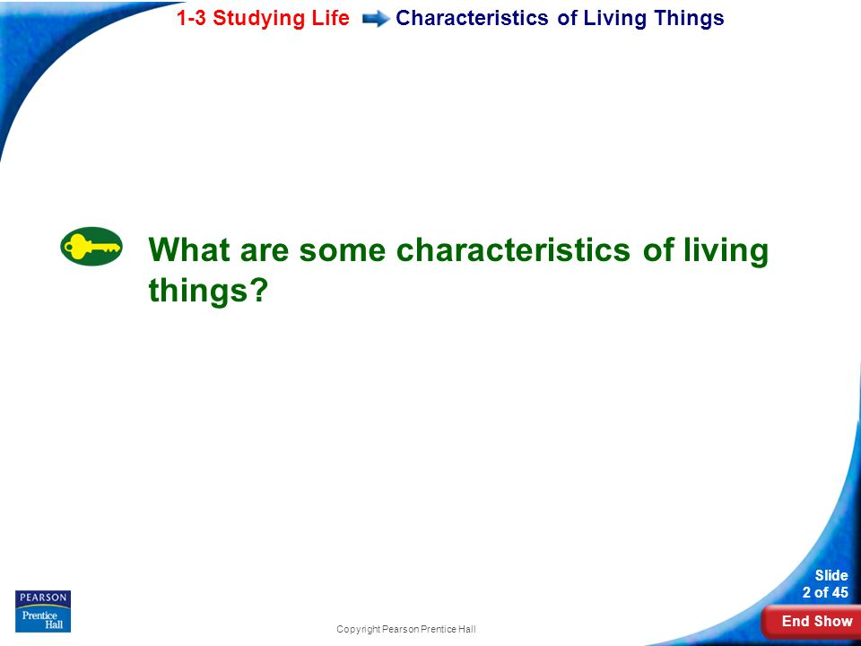 End Show 1-3 Studying Life Slide 2 of 45 Copyright Pearson Prentice Hall Characteristics of Living Things What are some characteristics of living things