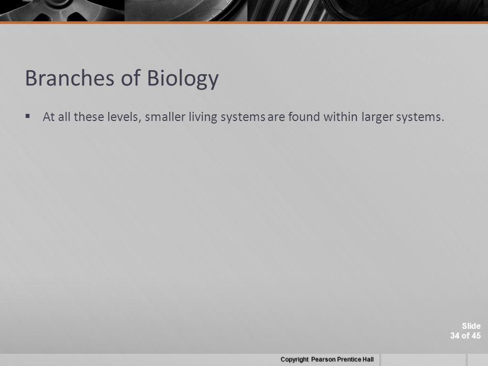 Slide 34 of 45 Branches of Biology  At all these levels, smaller living systems are found within larger systems.