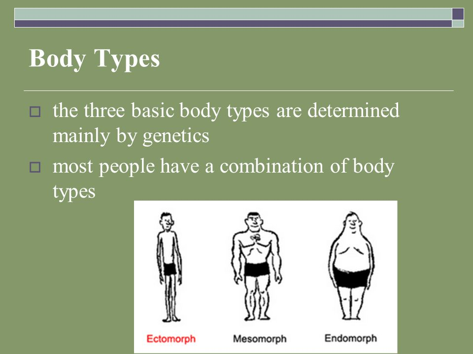 Body Types  the three basic body types are determined mainly by genetics  most people have a combination of body types