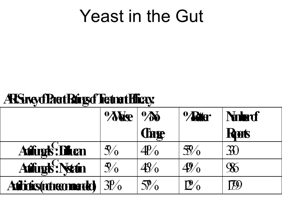 Yeast in the Gut