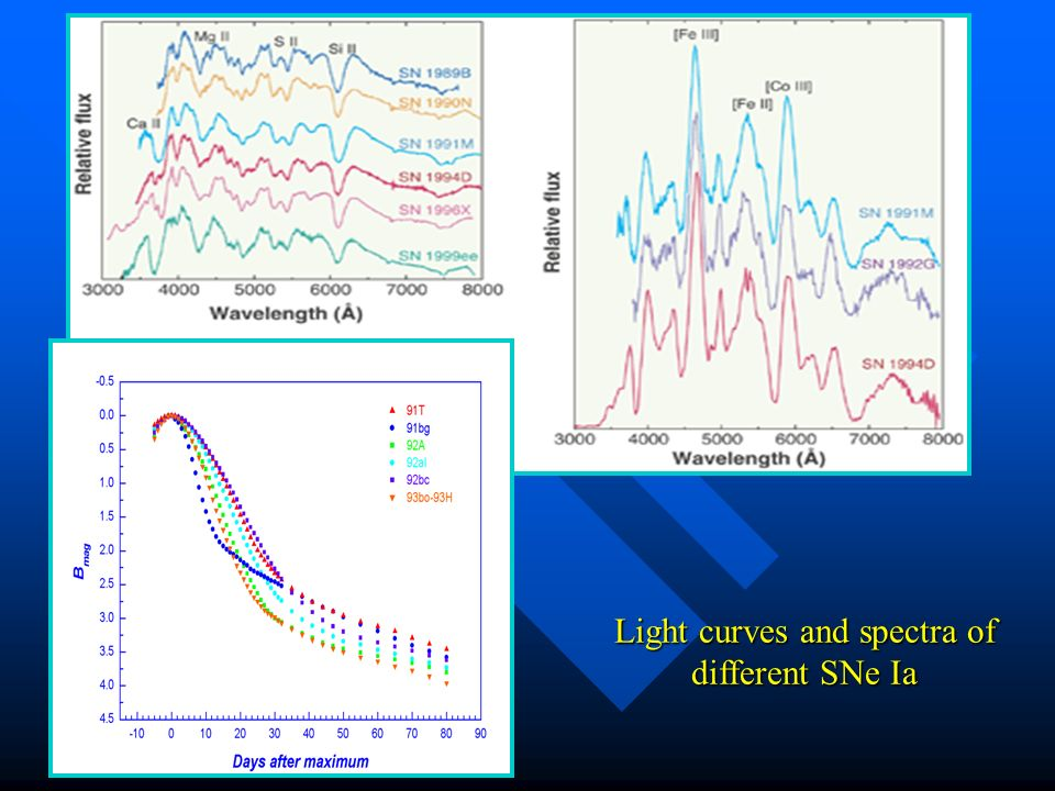 Light curves and spectra of different SNe Ia