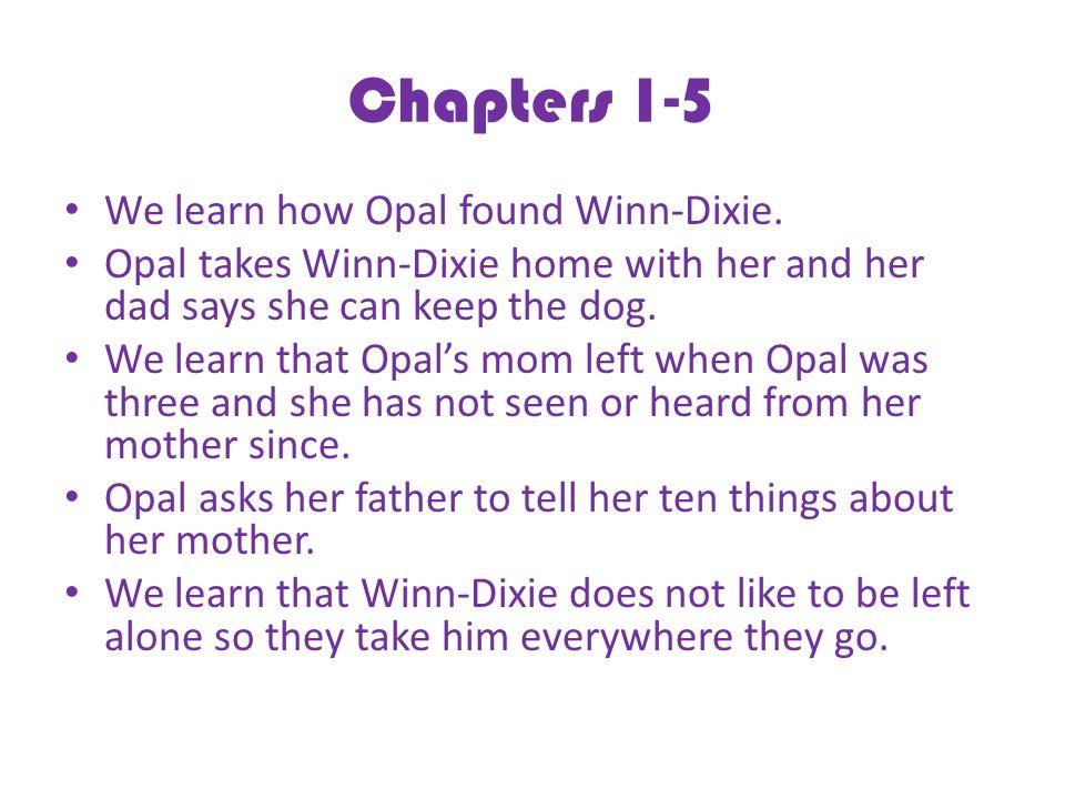 Chapters 1-5 We learn how Opal found Winn-Dixie.