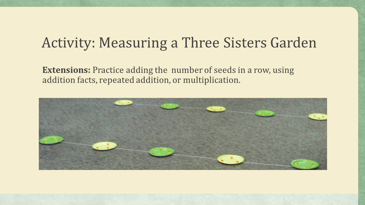 The three sisters presented by virginia agriculture in the 11 activity measuring a three sisters garden extensions practice adding the number of seeds in a row using addition facts repeated addition pooptronica Images
