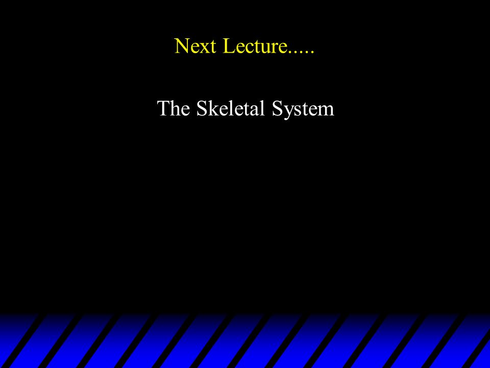Next Lecture..... The Skeletal System