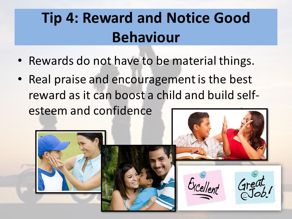 Tip 4: Reward and Notice Good Behaviour Rewards do not have to be material things.