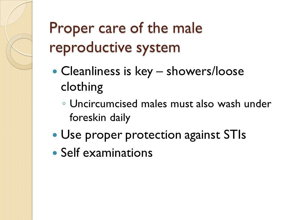 care of uncircumcised male
