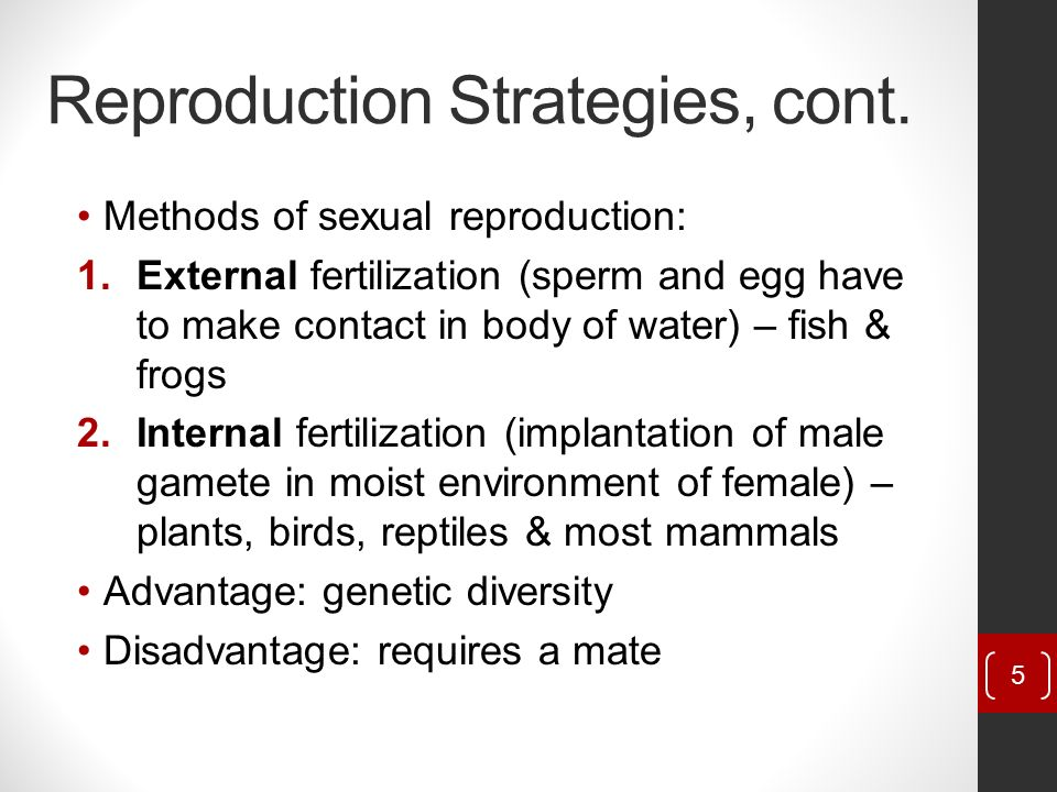 Sexual Reproduction Contributes To Genetic Diversity By Allowing