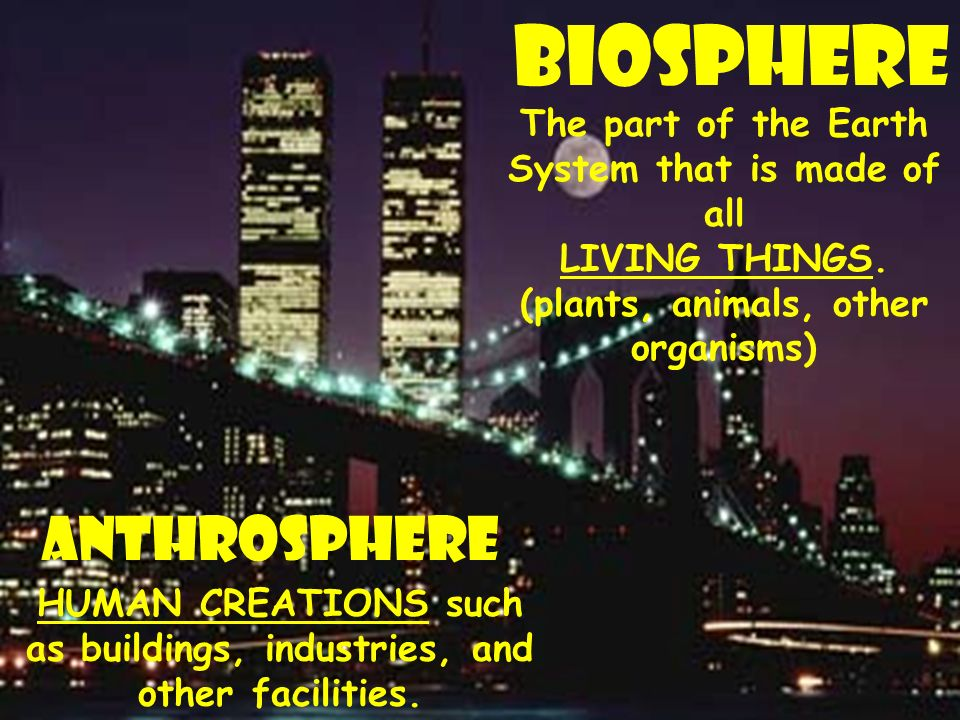 Biosphere The part of the Earth System that is made of all LIVING THINGS.